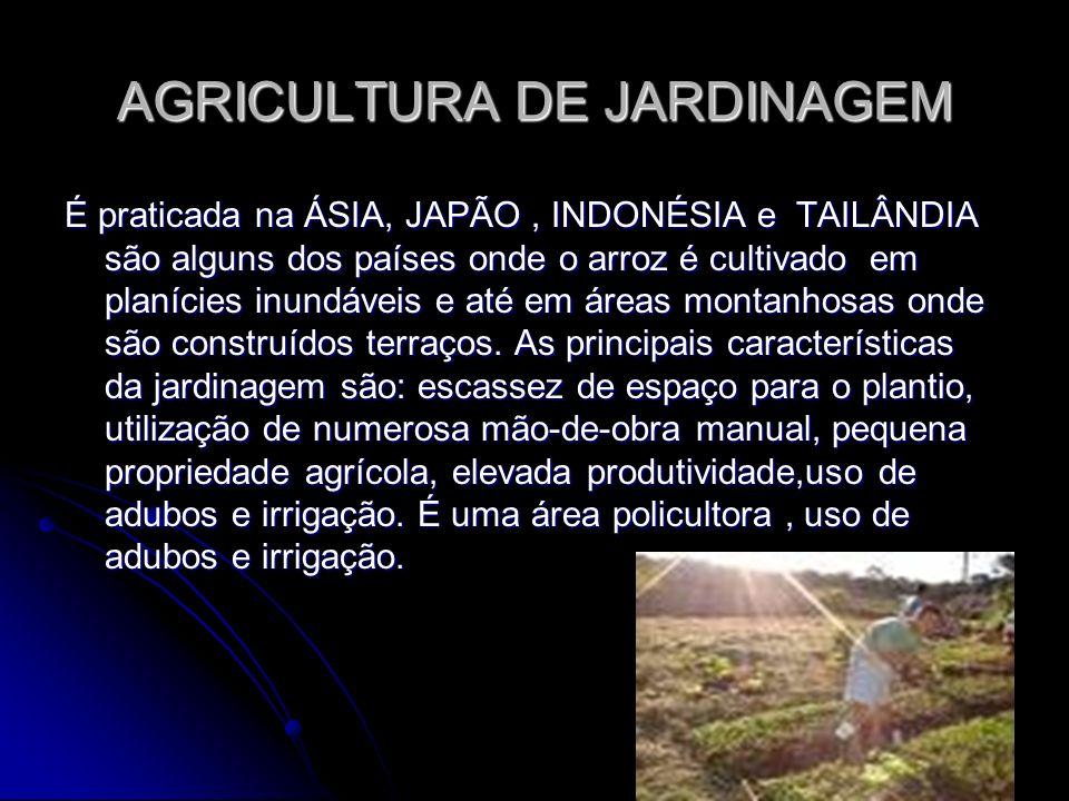 AGRICULTURA DE JARDINAGEM É praticada na ÁSIA, JAPÃO, INDONÉSIA e TAILÂNDIA são alguns dos países onde o arroz é cultivado em planícies inundáveis e a