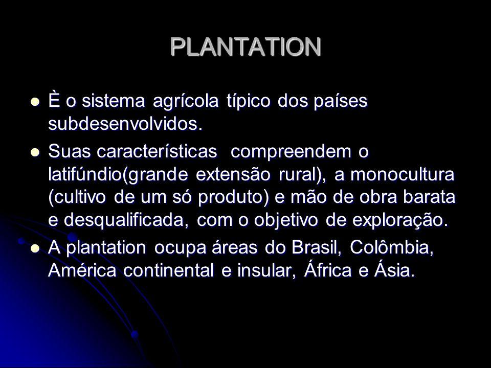 PLANTATION È o sistema agrícola típico dos países subdesenvolvidos. È o sistema agrícola típico dos países subdesenvolvidos. Suas características comp
