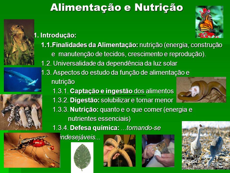 Alimentação e Nutrição 1. Introdução: 1. Introdução: 1.1.Finalidades da Alimentação: nutrição (energia, construção 1.1.Finalidades da Alimentação: nut