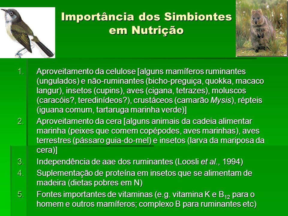 Importância dos Simbiontes em Nutrição 1.Aproveitamento da celulose [alguns mamíferos ruminantes (ungulados) e não-ruminantes (bicho-preguiça, quokka,