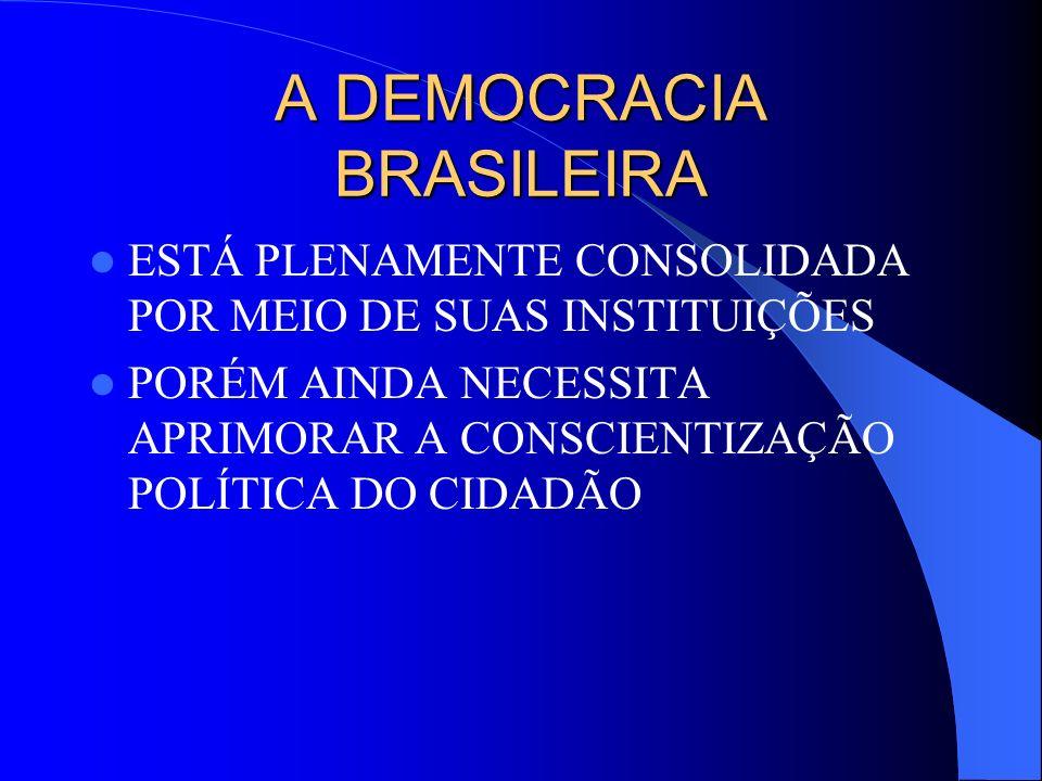 A DEMOCRACIA BRASILEIRA ESTÁ PLENAMENTE CONSOLIDADA POR MEIO DE SUAS INSTITUIÇÕES PORÉM AINDA NECESSITA APRIMORAR A CONSCIENTIZAÇÃO POLÍTICA DO CIDADÃ