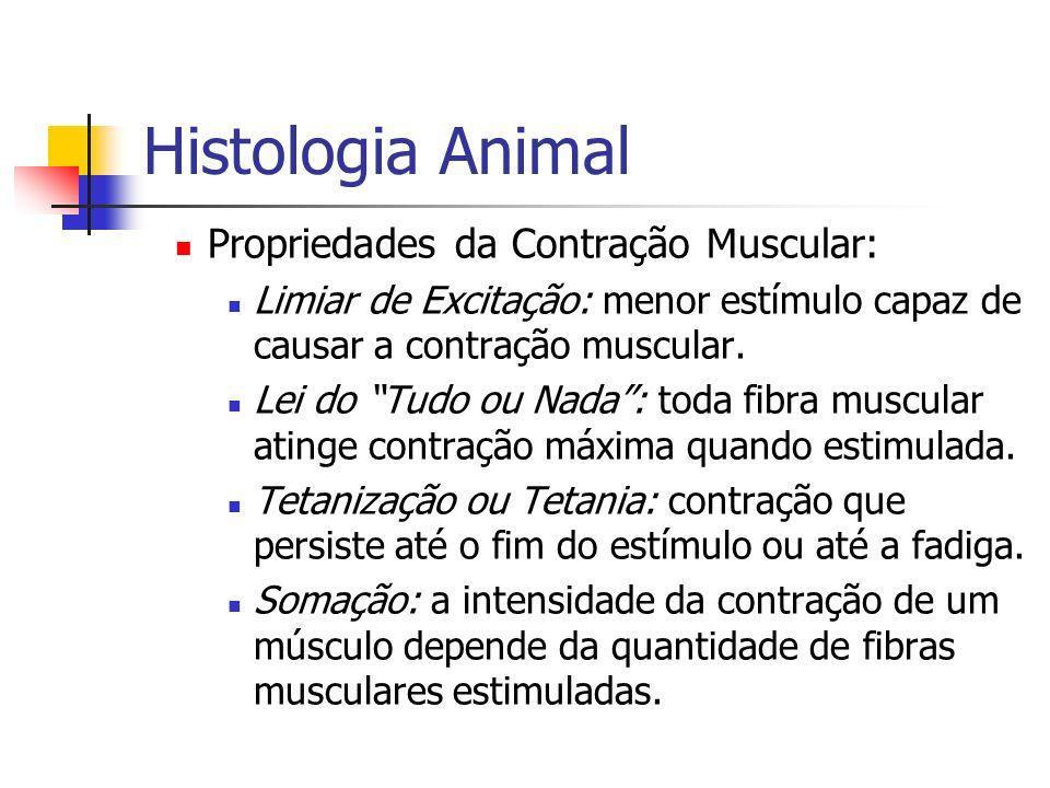 Histologia Animal Propriedades da Contração Muscular: Limiar de Excitação: menor estímulo capaz de causar a contração muscular. Lei do Tudo ou Nada: t