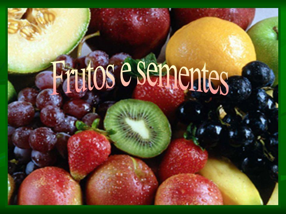 Fruto carnoso Pomo : Derivado de um hipanto que envolve os carpelos (dois ou mais) e de ovário ínfero.