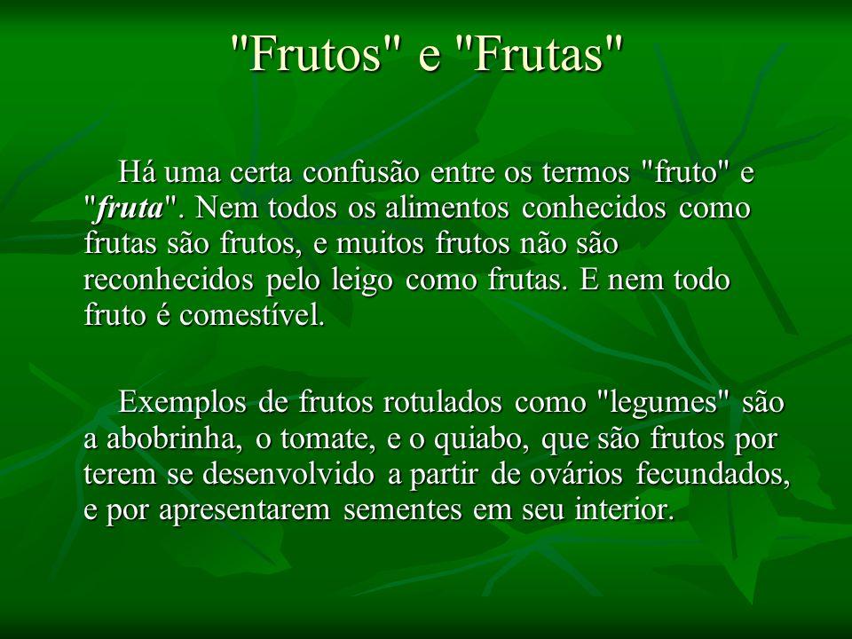 O Fruto Em termo botânico, o fruto é uma estrutura presente em todas as Angiospermas onde as sementes são protegidas enquanto amadurecem.