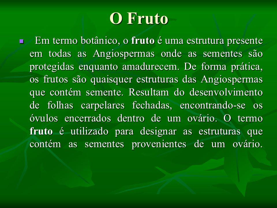 O Fruto Em termo botânico, o fruto é uma estrutura presente em todas as Angiospermas onde as sementes são protegidas enquanto amadurecem. De forma prá