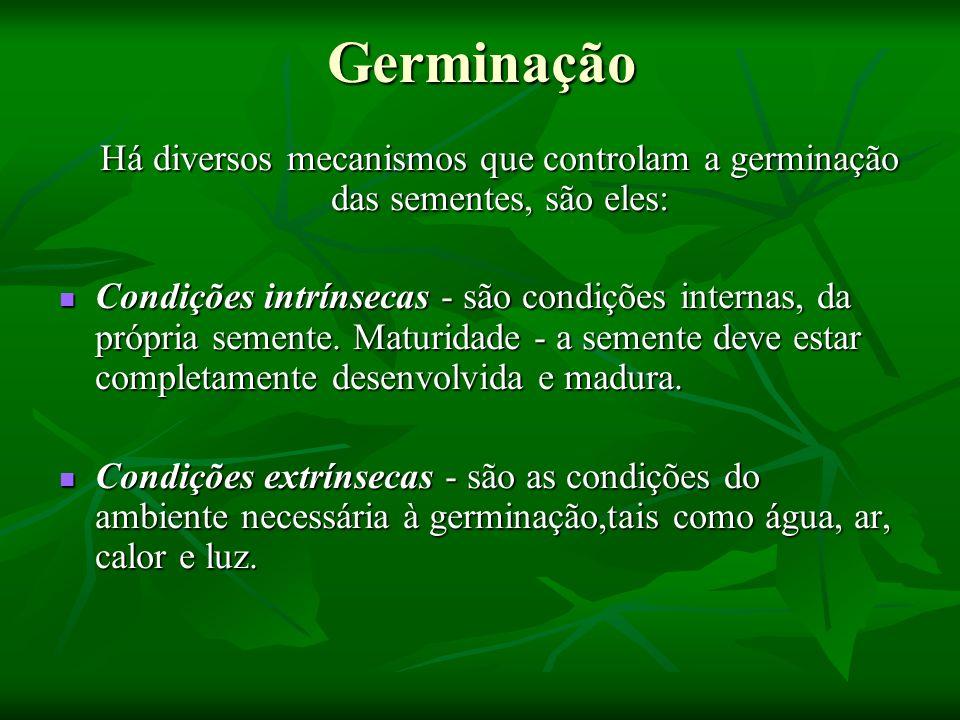 Germinação Há diversos mecanismos que controlam a germinação das sementes, são eles: Há diversos mecanismos que controlam a germinação das sementes, s