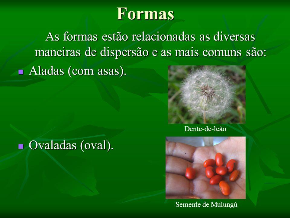 Formas As formas estão relacionadas as diversas maneiras de dispersão e as mais comuns são: As formas estão relacionadas as diversas maneiras de dispe