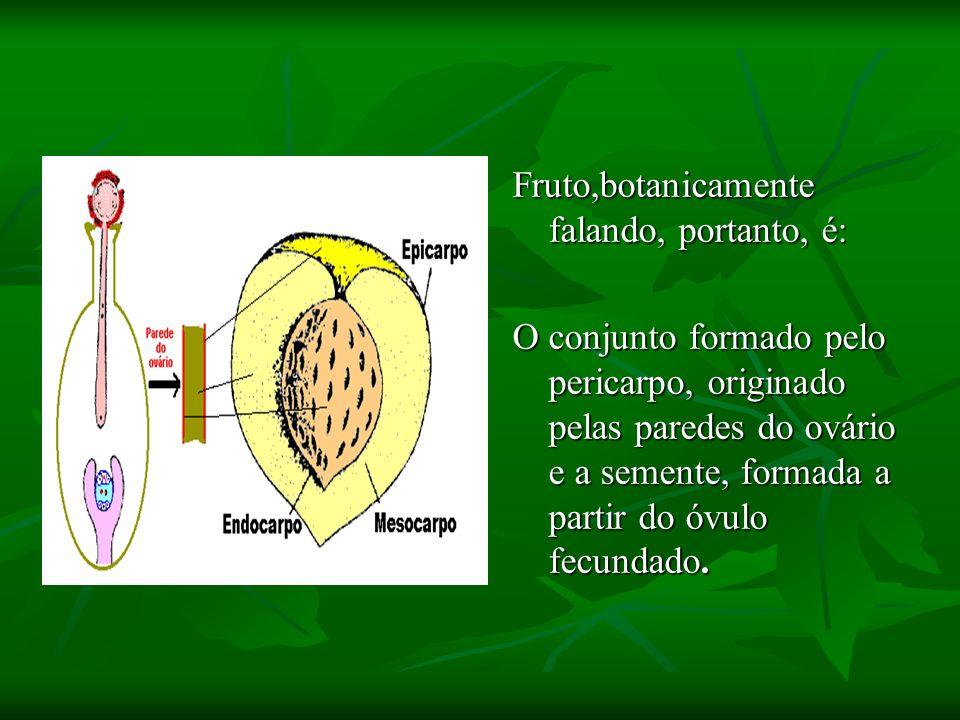 Fruto,botanicamente falando, portanto, é: O conjunto formado pelo pericarpo, originado pelas paredes do ovário e a semente, formada a partir do óvulo