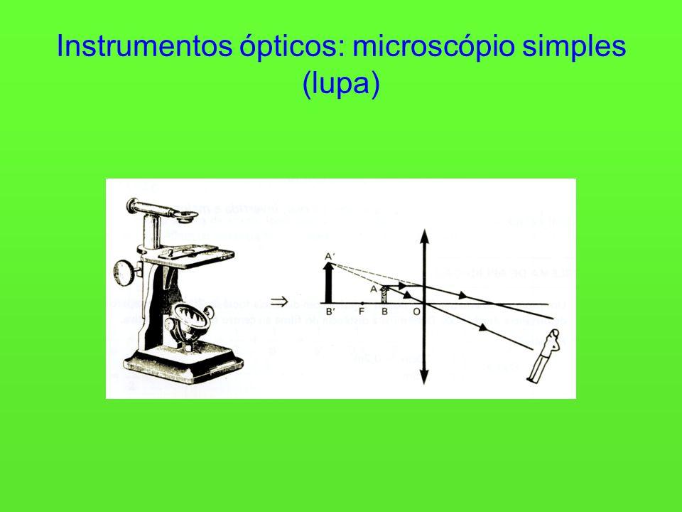 Instrumentos ópticos: microscópio simples (lupa)