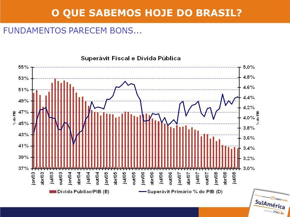 O QUE SABEMOS HOJE DO BRASIL? FUNDAMENTOS PARECEM BONS...