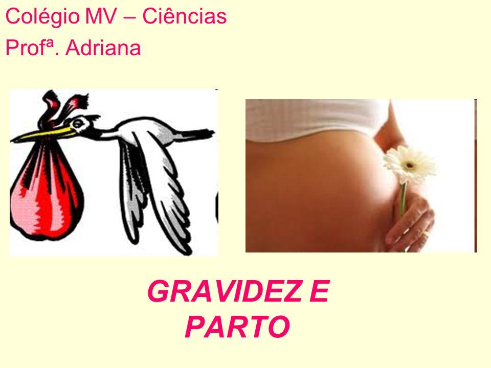 GRAVIDEZ E PARTO Colégio MV – Ciências Profª. Adriana