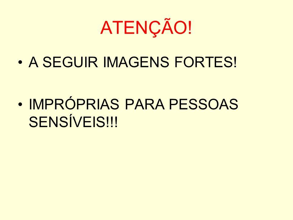 ATENÇÃO! A SEGUIR IMAGENS FORTES! IMPRÓPRIAS PARA PESSOAS SENSÍVEIS!!!