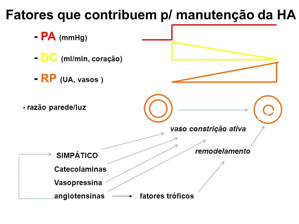 Fatores que contribuem p/ manutenção da HA - PA (mmHg) - DC (ml/min, coração)) - RP (UA, vasos)) - razão parede/luz SIMPÁTICO Catecolaminas Vasopressi