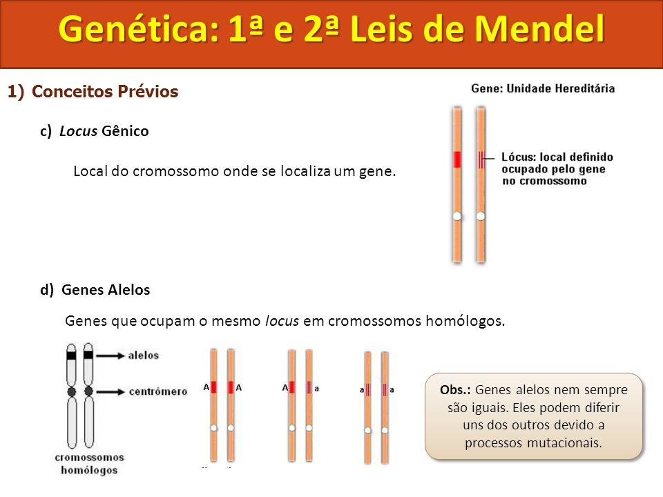 1)Conceitos Prévios c) Locus Gênico Local do cromossomo onde se localiza um gene. d) Genes Alelos Genes que ocupam o mesmo locus em cromossomos homólo