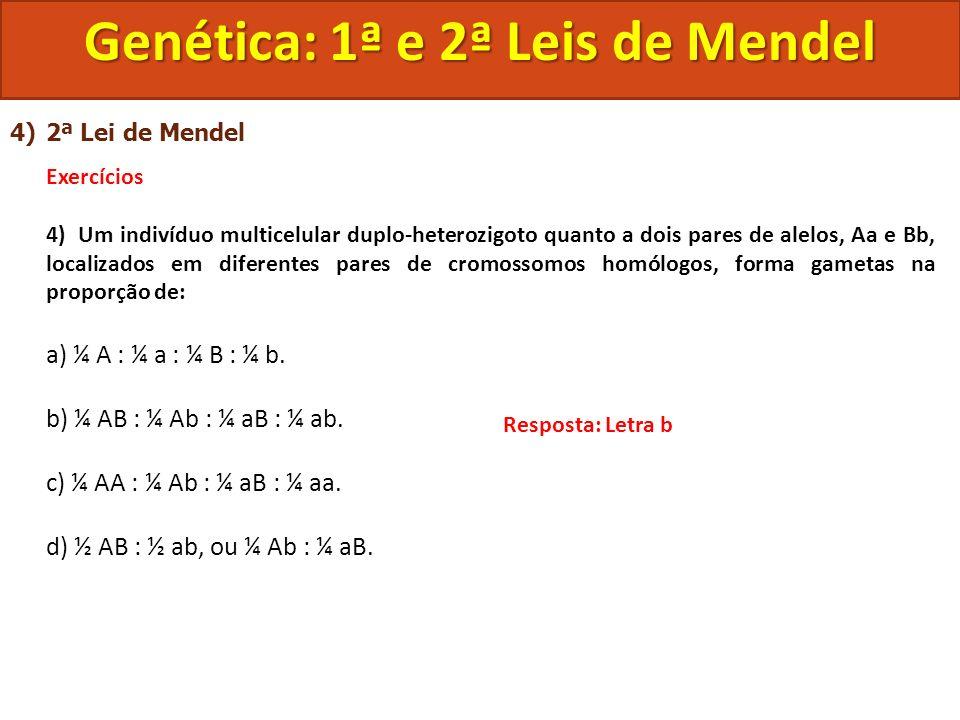 4)2ª Lei de Mendel Exercícios 4) Um indivíduo multicelular duplo-heterozigoto quanto a dois pares de alelos, Aa e Bb, localizados em diferentes pares