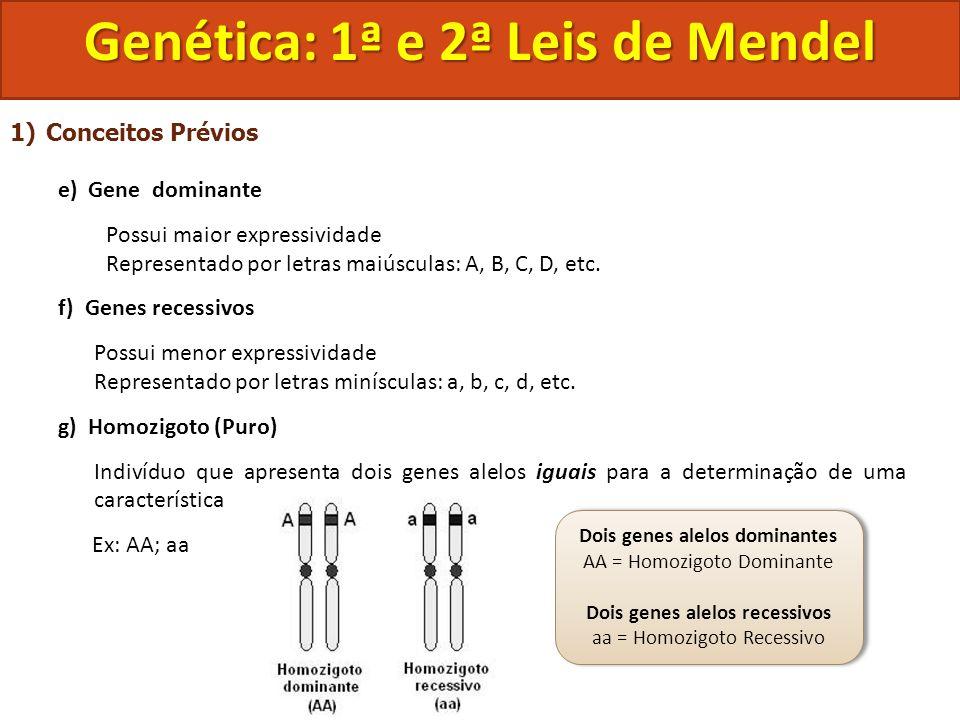 1)Conceitos Prévios e) Gene dominante Possui maior expressividade Representado por letras maiúsculas: A, B, C, D, etc. f) Genes recessivos Possui meno