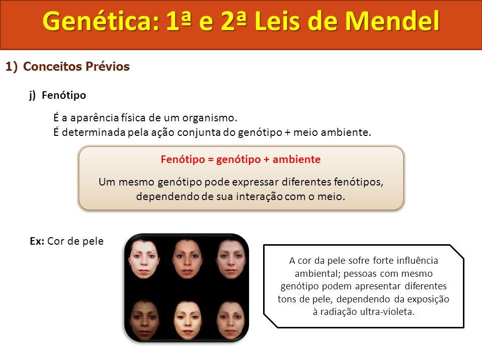 1)Conceitos Prévios j) Fenótipo É a aparência física de um organismo. É determinada pela ação conjunta do genótipo + meio ambiente. Ex: Cor de pele Ge
