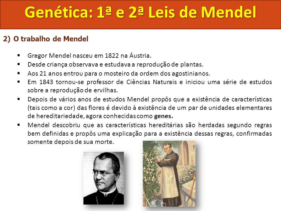 2)O trabalho de Mendel Gregor Mendel nasceu em 1822 na Áustria. Desde criança observava e estudava a reprodução de plantas. Aos 21 anos entrou para o