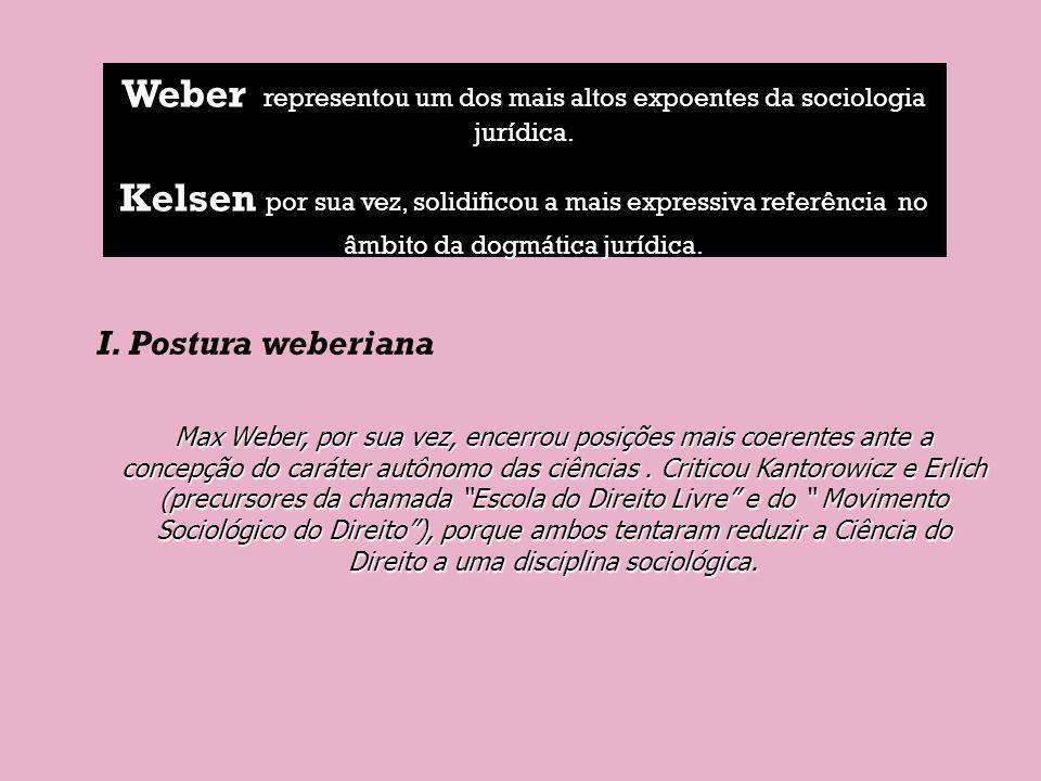 Weber representou um dos mais altos expoentes da sociologia jurídica. Kelsen por sua vez, solidificou a mais expressiva referência no âmbito da dogmát