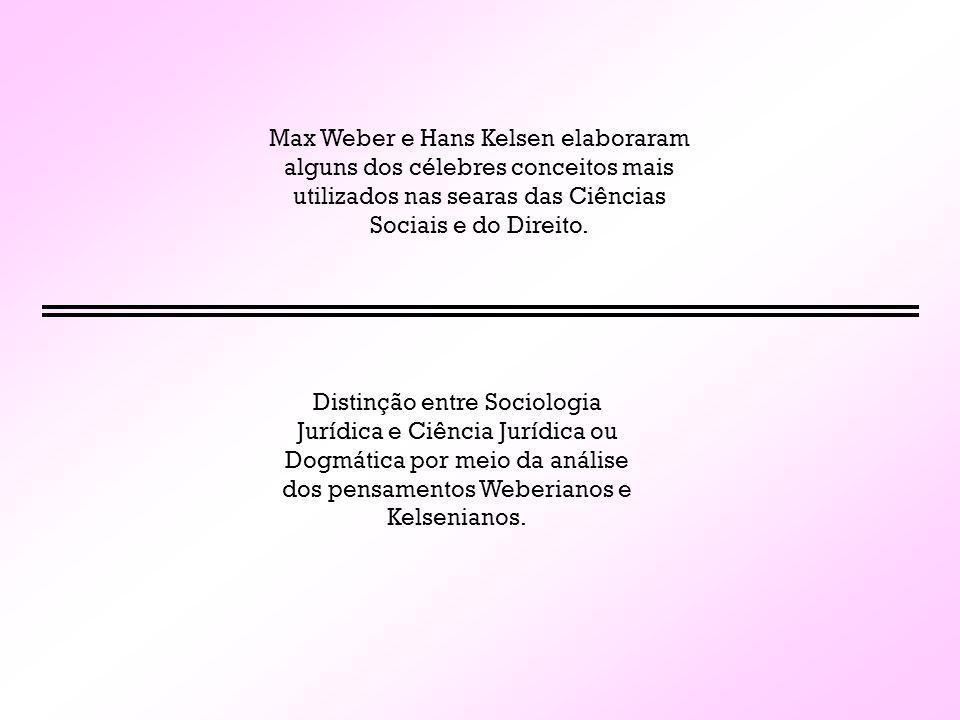 Max Weber e Hans Kelsen elaboraram alguns dos célebres conceitos mais utilizados nas searas das Ciências Sociais e do Direito. Distinção entre Sociolo
