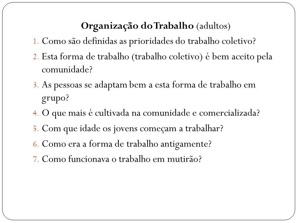 Organização do Trabalho (adultos) 1. Como são definidas as prioridades do trabalho coletivo? 2. Esta forma de trabalho (trabalho coletivo) é bem aceit
