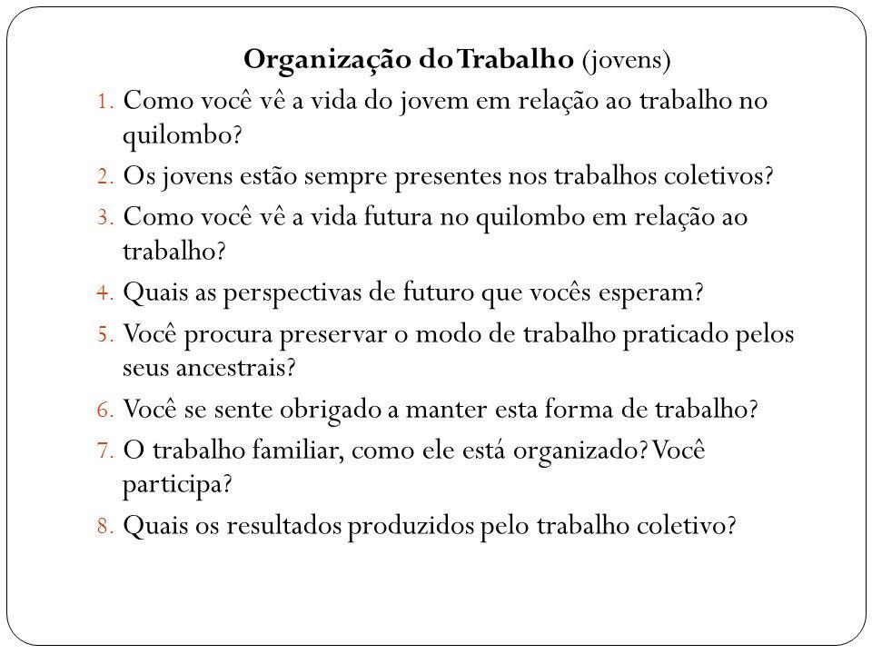 Organização do Trabalho (jovens) 1. Como você vê a vida do jovem em relação ao trabalho no quilombo? 2. Os jovens estão sempre presentes nos trabalhos