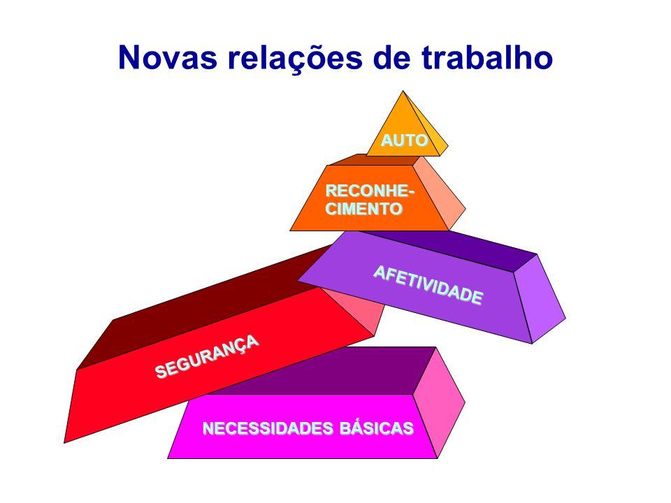 Novas relações de trabalho NECESSIDADES BÁSICAS SEGURANÇA AFETIVIDADE AUTO RECONHE-CIMENTO