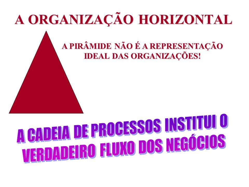A ORGANIZAÇÃO HORIZONTAL A PIRÂMIDE NÃO É A REPRESENTAÇÃO IDEAL DAS ORGANIZAÇÕES!