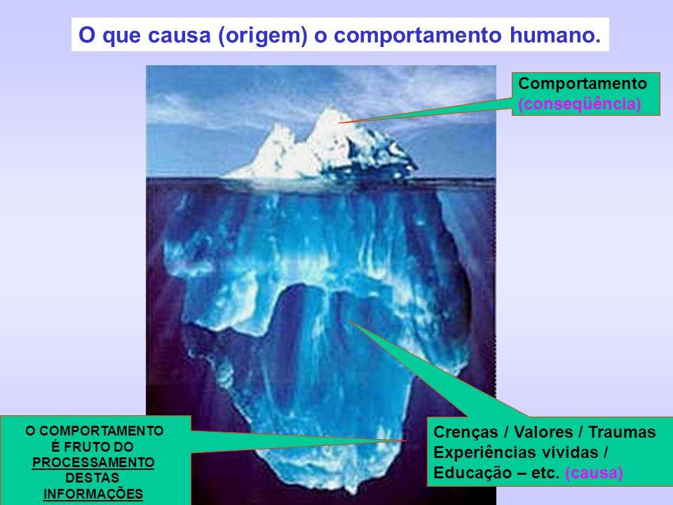 O que causa (origem) o comportamento humano. O COMPORTAMENTO É FRUTO DO PROCESSAMENTO DESTAS INFORMAÇÕES Comportamento (conseqüência) Crenças / Valore