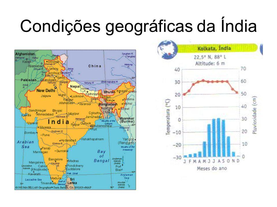 Condições geográficas da Índia