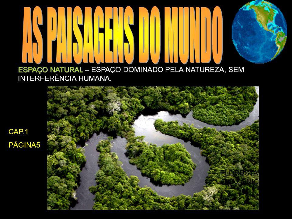 ESPAÇO NATURAL ESPAÇO NATURAL – ESPAÇO DOMINADO PELA NATUREZA, SEM INTERFERÊNCIA HUMANA. FLORESTA AMAZÔNICA CAP.1 PÁGINA5
