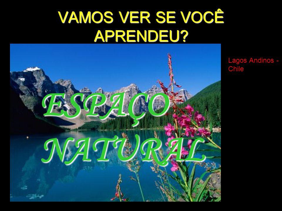 VAMOS VER SE VOCÊ APRENDEU? Lagos Andinos - Chile ESPAÇONATURAL