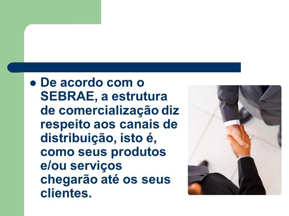 De acordo com o SEBRAE, a estrutura de comercialização diz respeito aos canais de distribuição, isto é, como seus produtos e/ou serviços chegarão até