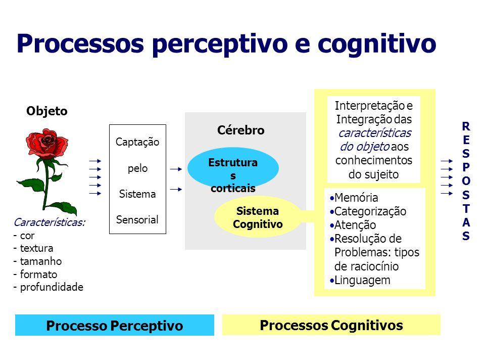 Objeto Características: - cor - textura - tamanho - formato - profundidade Captação pelo Sistema Sensorial Cérebro Estrutura s corticais Sistema Cogni