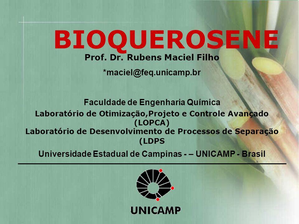 Prof. Dr. Rubens Maciel Filho *maciel@feq.unicamp.br Faculdade de Engenharia Química Laboratório de Otimização,Projeto e Controle Avançado (LOPCA) Lab