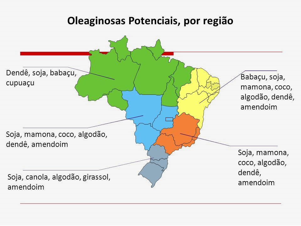 Oleaginosas Potenciais, por região Dendê, soja, babaçu, cupuaçu Soja, mamona, coco, algodão, dendê, amendoim Soja, canola, algodão, girassol, amendoim