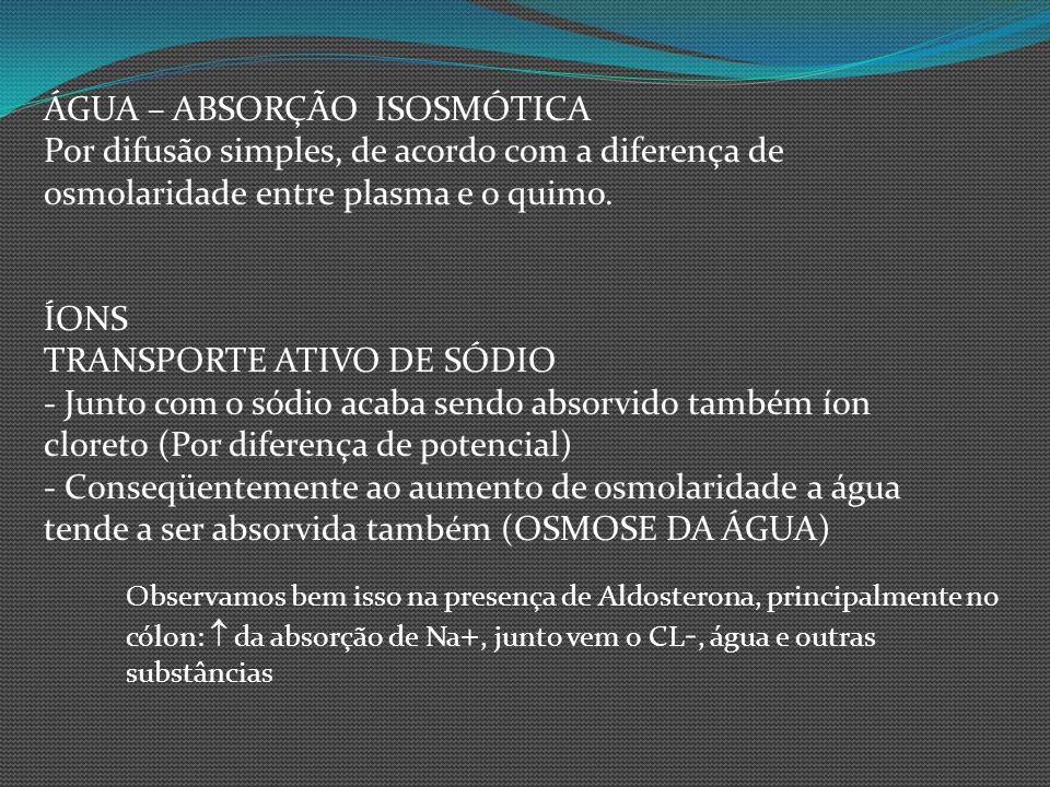 ÁGUA – ABSORÇÃO ISOSMÓTICA Por difusão simples, de acordo com a diferença de osmolaridade entre plasma e o quimo. ÍONS TRANSPORTE ATIVO DE SÓDIO - Jun