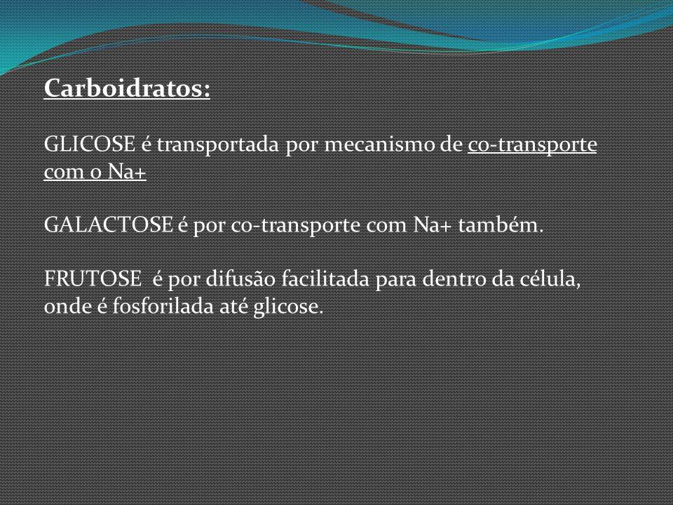 Carboidratos: GLICOSE é transportada por mecanismo de co-transporte com o Na+ GALACTOSE é por co-transporte com Na+ também. FRUTOSE é por difusão faci