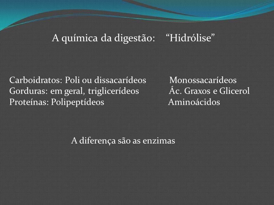 A química da digestão: Hidrólise Carboidratos: Poli ou dissacarídeos Monossacarídeos Gorduras: em geral, triglicerídeos Ác. Graxos e Glicerol Proteína