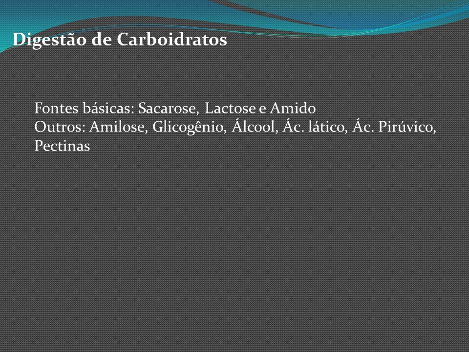 Digestão de Carboidratos Fontes básicas: Sacarose, Lactose e Amido Outros: Amilose, Glicogênio, Álcool, Ác. lático, Ác. Pirúvico, Pectinas