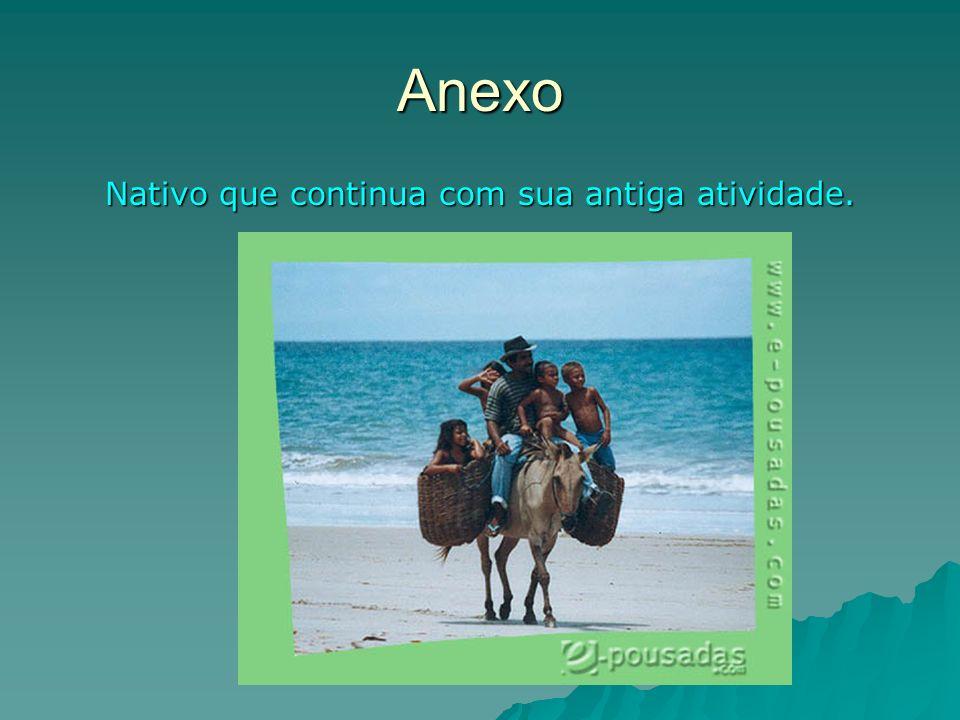 Anexo Nativo que continua com sua antiga atividade.