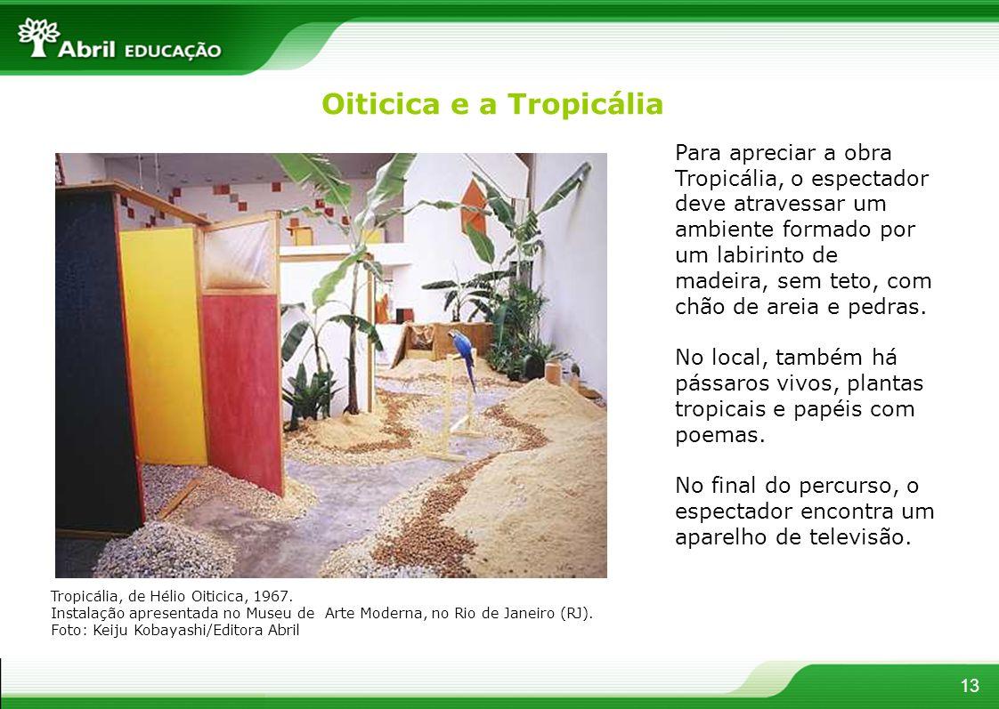 Para apreciar a obra Tropicália, o espectador deve atravessar um ambiente formado por um labirinto de madeira, sem teto, com chão de areia e pedras. N