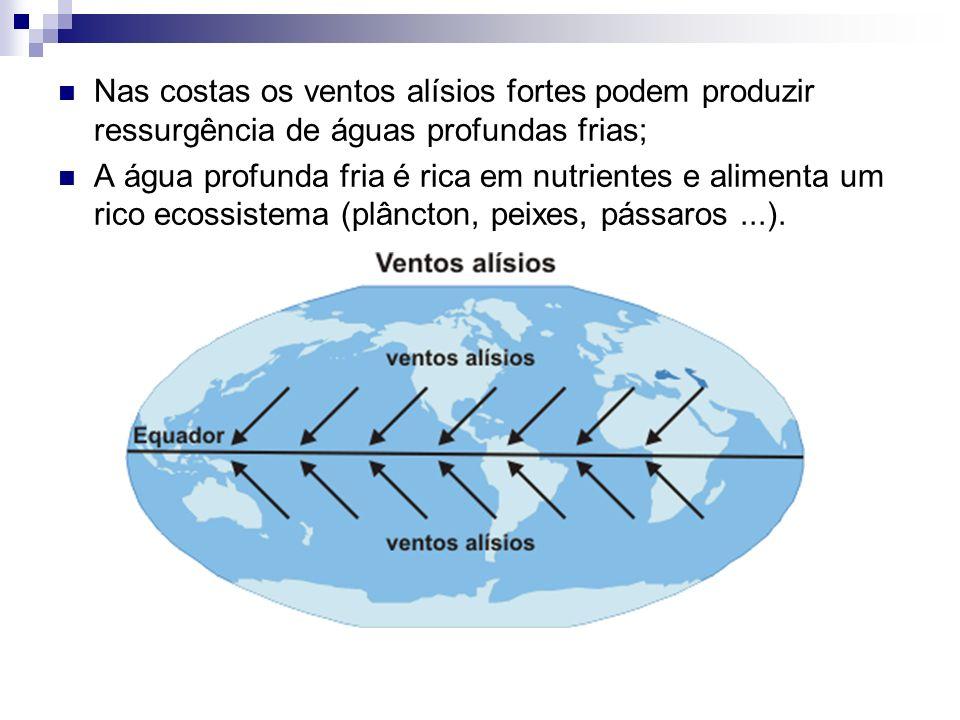 Circulação Geral Atmosférica Na circulação geral da atmosfera ocorre um aquecimento solar diferenciado entre o Equador e os pólos.