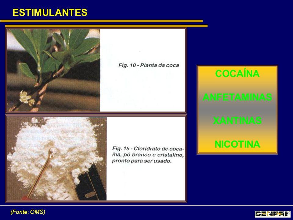 ESTIMULANTES (Fonte: OMS) COCAÍNA ANFETAMINAS XANTINAS NICOTINA