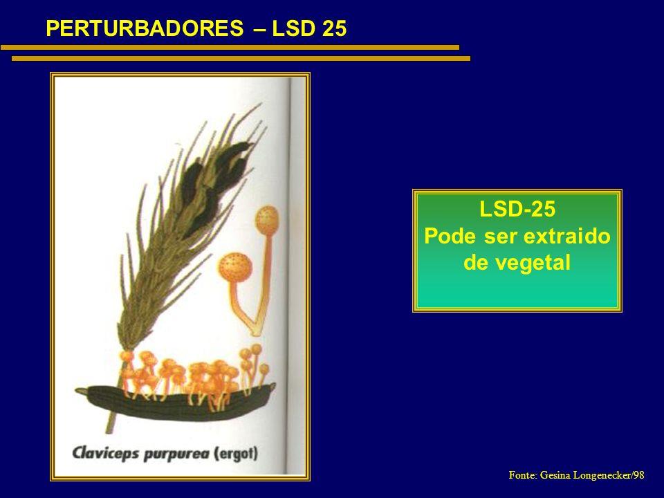 Fonte: Gesina Longenecker/98 PERTURBADORES – LSD 25 LSD-25 Pode ser extraido de vegetal
