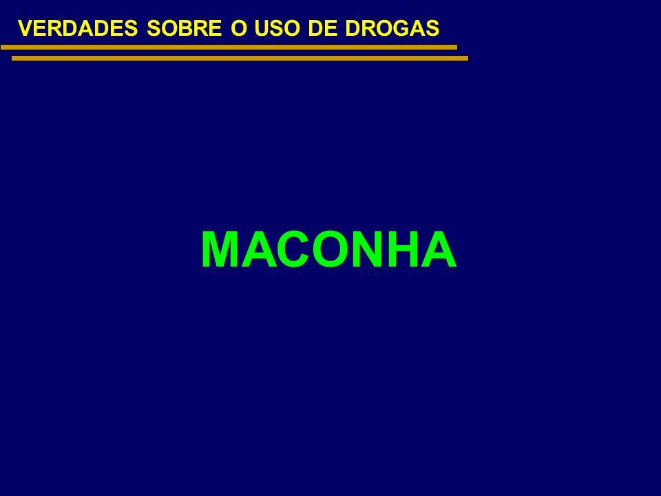 VERDADES SOBRE O USO DE DROGAS MACONHA