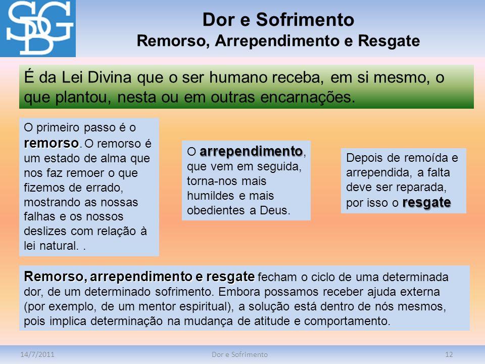14/7/2011Dor e Sofrimento12 É da Lei Divina que o ser humano receba, em si mesmo, o que plantou, nesta ou em outras encarnações. Dor e Sofrimento Remo