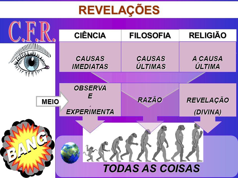 OBJETO TODAS AS COISAS TODAS AS COISAS REVELAÇÕES CIÊNCIAFILOSOFIA RELIGIÃO CAUSAS ÚLTIMAS A CAUSA ÚLTIMA OBSERVA E. EXPERIMENTA RAZÃO CAUSAS IMEDIATA