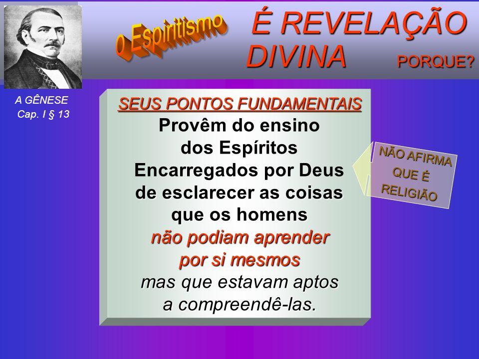 É REVELAÇÃO DIVINA PORQUE? SEUS PONTOS FUNDAMENTAIS Provêm do ensino dos Espíritos Encarregados por Deus de esclarecer as coisas que os homens não pod