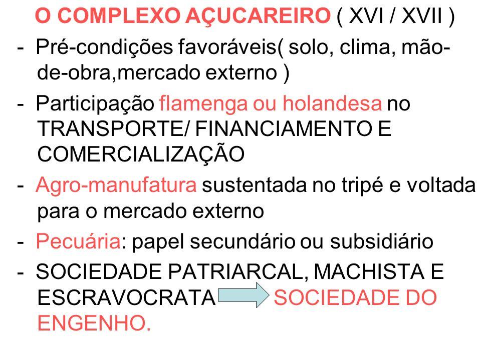 O COMPLEXO AÇUCAREIRO ( XVI / XVII ) - Pré-condições favoráveis( solo, clima, mão- de-obra,mercado externo ) - Participação flamenga ou holandesa no T